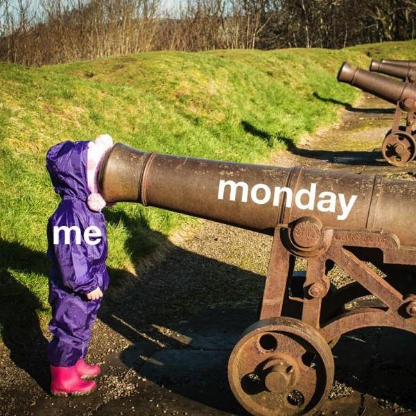 Name:  1-Mondays-suck.jpg Views: 40 Size:  144.4 KB